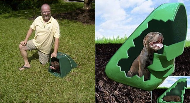 7 weirdly amazing items to help your dog stand out from the crowd - Underground dog houses ...
