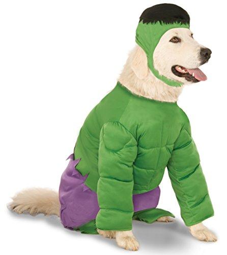 A golden retriever wears a Hulk large dog costume with headpiece.