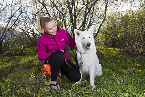 The RC Pet First Aid Kit is a simple addition to your walk or trip with your dog.