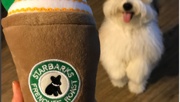 8 Fun Fall-Themed Toys Your Dog Definitely Wants