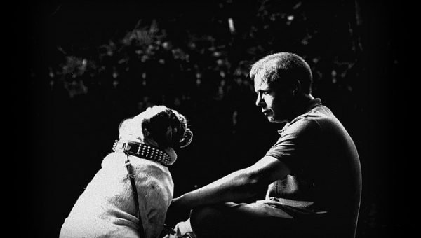 The New Breed of Service Dog: Canine Companions for Psychiatric Patients