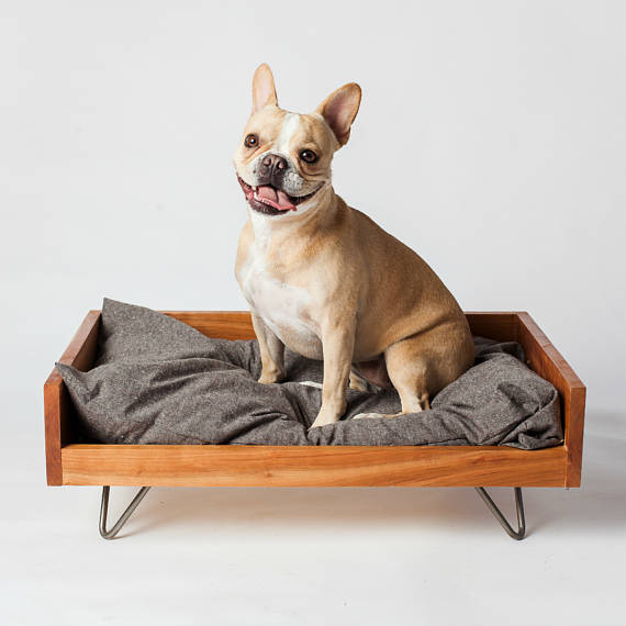 Cozycama Does Mid Century Modern For Dogs With This Raised Platform Bed On Delicate Hairpin Legs Your Choice Of Wood And Size 295 375