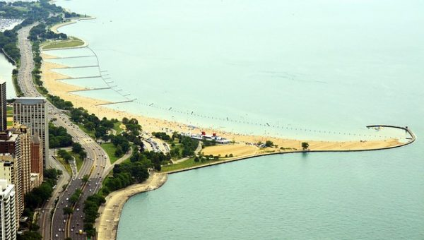 Montrose Dog Beach: Top Dog Beach in Chicago