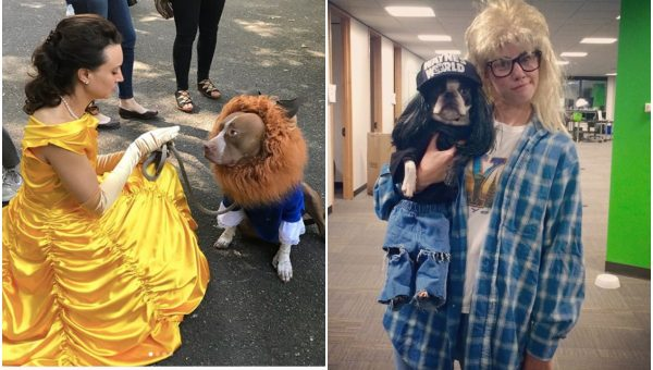 The Best Matching Costumes for Dogs and Their Humans on Halloween