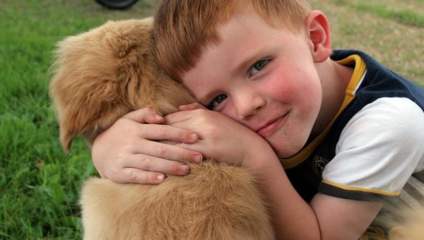 Seizure Support: Working with Dogs for Response and Alerts
