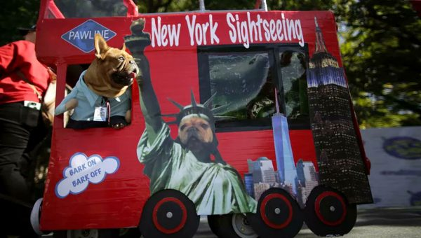 13 Incredible Costumes from NYC's Tompkins Square Halloween Dog Parade 2017