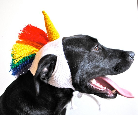 Best Dog Halloween Costumes 2017