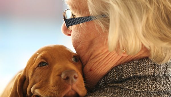 Service Dogs and Elder Care: How Canine Caregivers Are Making a Difference in the Lives of Seniors
