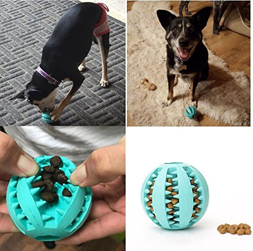 We Review 6 of the Best Treat-Dispensing Dog Toys | The Dog