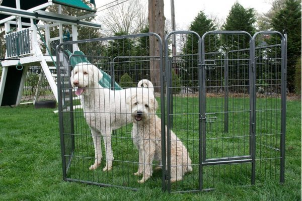 This 8-panel portable playpen can be expanded by adding on more playpens to  encompass any size of dog run. This model comes in a range of heights, ... - The Best Portable Dog Runs To Keep Dogs Safe In Every Backyard The