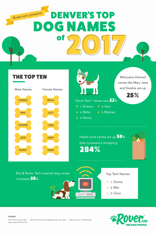 Pet Names For People: Denver's Top Dog Names Of 2017