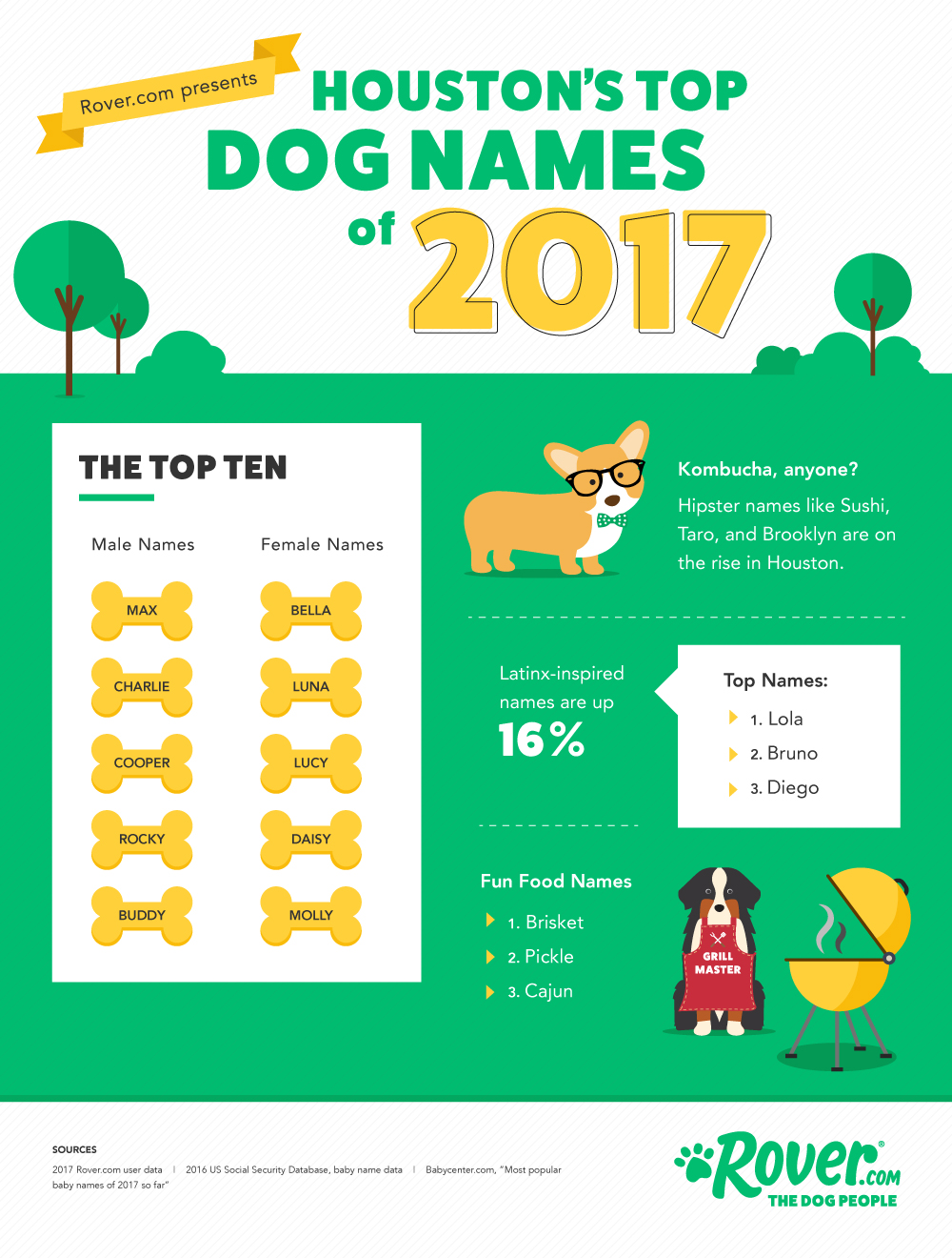 houston dog names best of 2017