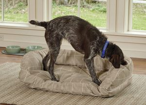 Orvis ToughChew indestructible dog bed