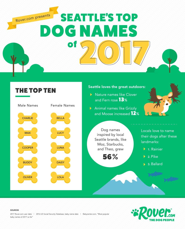 creative animal names