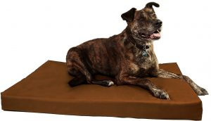 Big Barker orthopedic indestructible crate pad