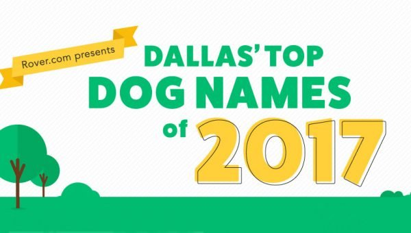 Dallas' Top Dog Names for 2017