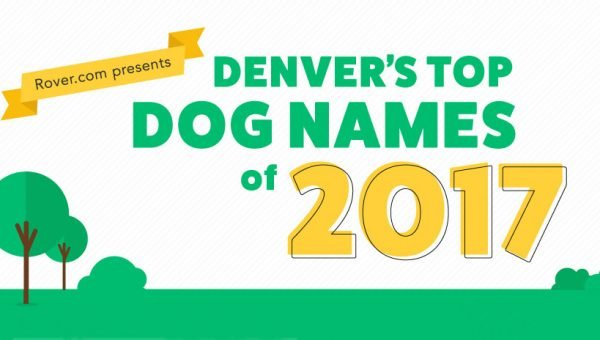 dog names 2018 top 100 male and female dog names in the us