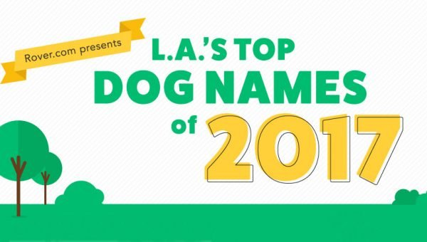 The Top Dog Names of Los Angeles for 2017