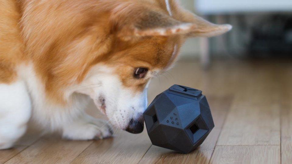Image result for 2. The Odin Dog Treat Puzzle Toy
