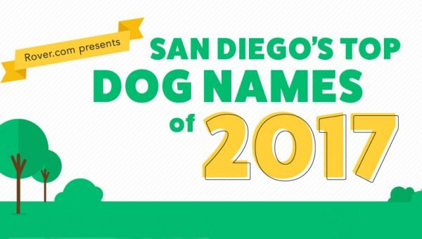 San Diego's Top Dog Names for 2017