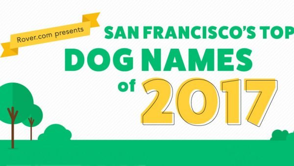 San Francisco's Top Dog Names of 2017