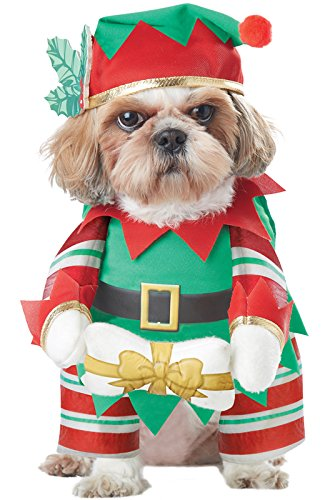 And your dog walks in this get-up. We can't picture anything more adorable  than this elf Christmas dog outfit! - 11 Best Christmas Dog Outfits To Get Your Dog In The Holiday Spirit