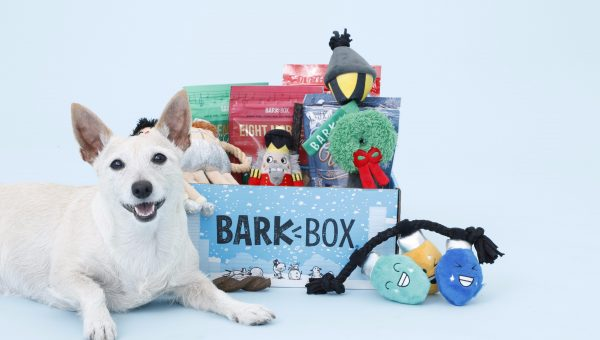 The Double Deluxe BarkBox Is the Gift Your Dog Really, Really Wants