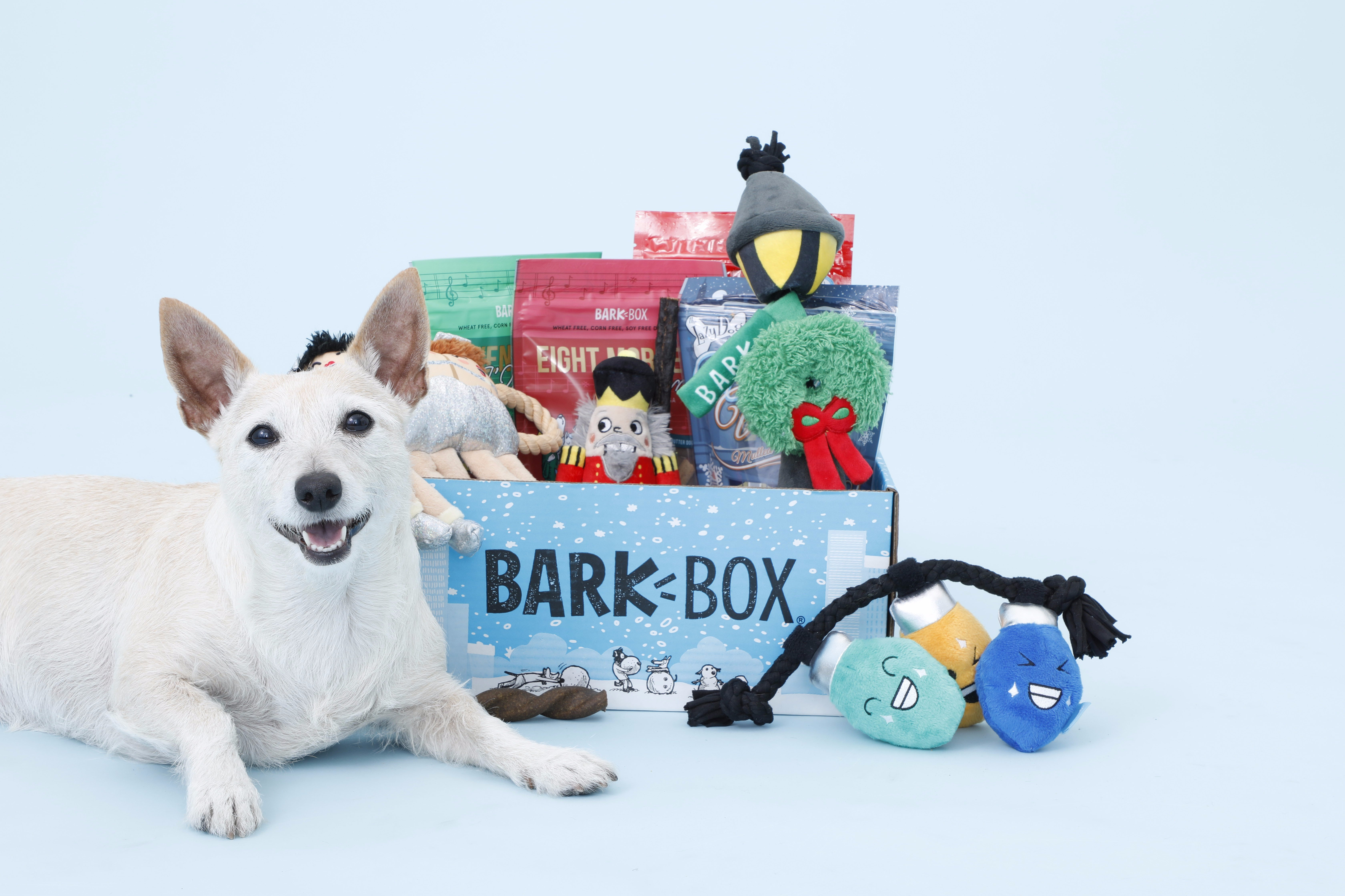The Double Deluxe BarkBox Is the Gift Your Dog Really, Really Wants ...