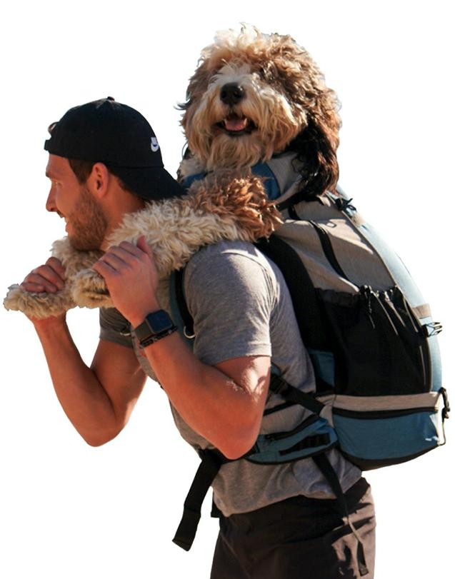 Man carrying large dog in K9 Sport Sack backpack