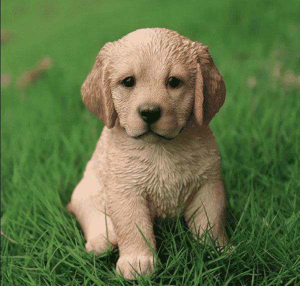 Golden Retriever puppy statue from Wayfair