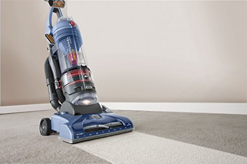 6 Best Vacuums For Pet Hair Vacuums For Dog Hair That Actually Work