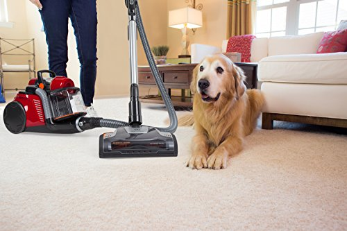 7f9fcc1ae62 The Electrolux vacuum is particularly beloved for its ability to suck up  long pet hairs from plush or extra-soft carpets. Reviewers point out that  its ...