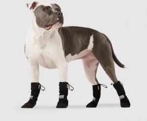 Canada Pooch Soft Shield dog boots