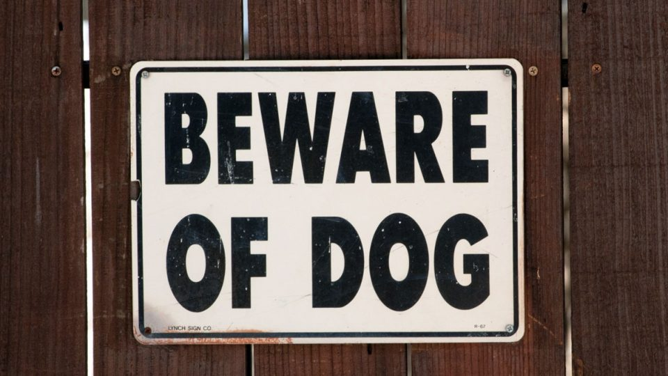 'Beware of Dog' Sign Doesn't Live Up to its Name in ...