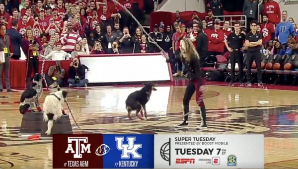 Double Dutch Dogs Wow Basketball Fans in Epic Halftime Show [Video]