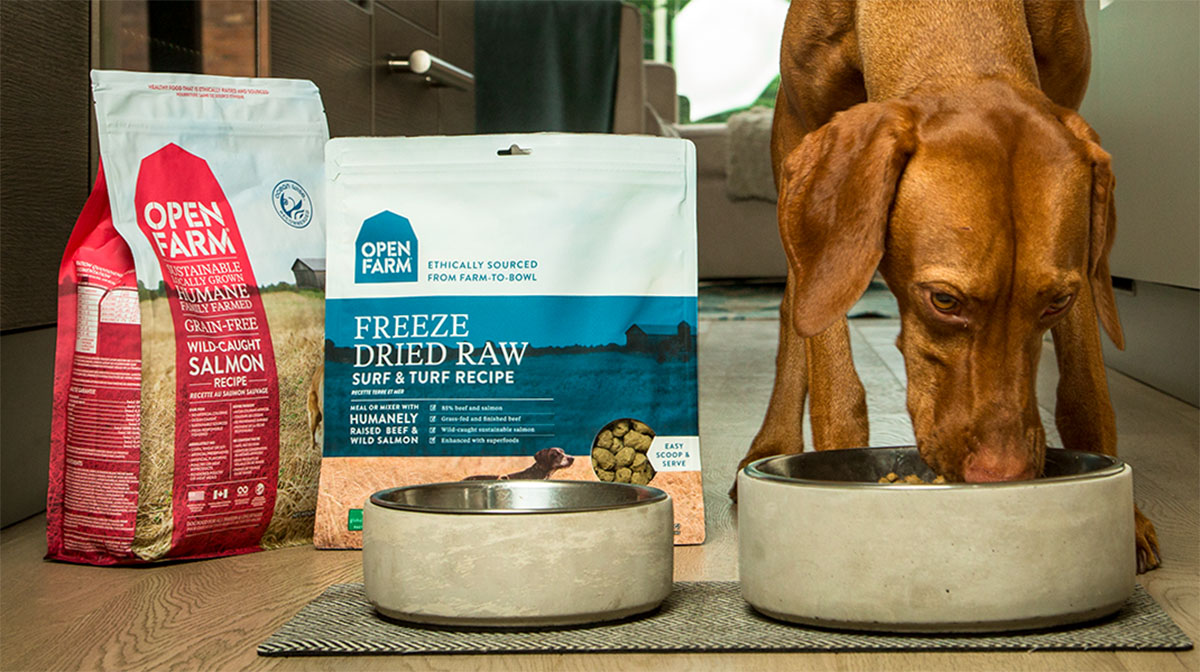 Do You Know Where Your Dog Food Really Comes From The Dog People By Rover Com