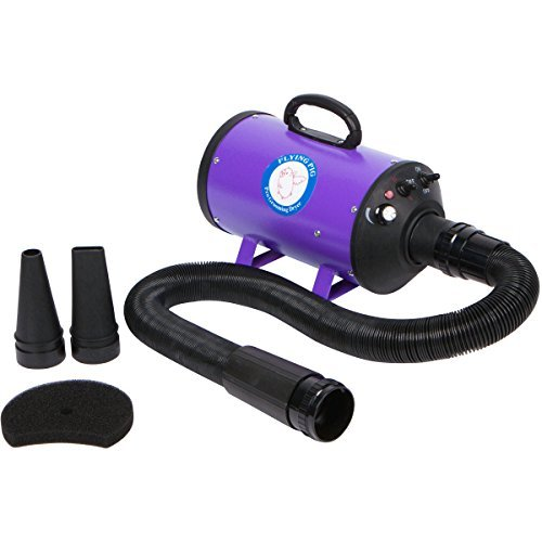 High-Velocity Pet Grooming Dryer