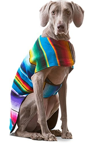 10 Best Dog Clothes for Large Dogs Because They Deserve to
