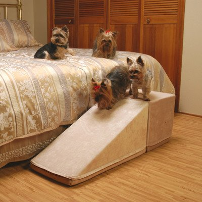 How To Choose A Pet Ramp For Your Dog Plus 3 Top Picks