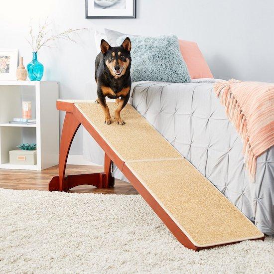 Pet Safe ramp