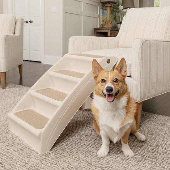 PetSafe stairs
