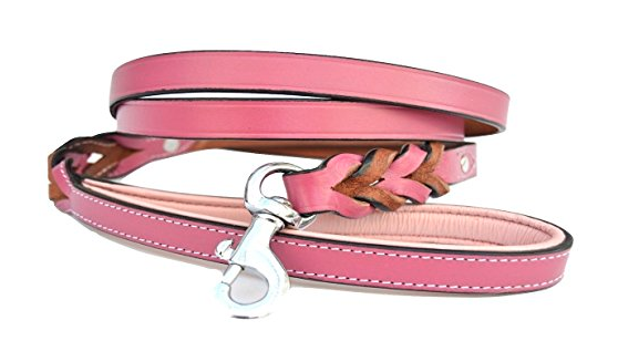 9 Pretty in Pink Leashes and Collars for Your Sweet Dog