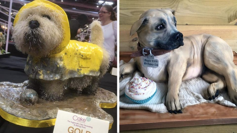 Talented British Baker Wows With Lifelike Dog Cakes The Dog People