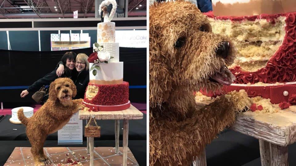expert dog cake decoration