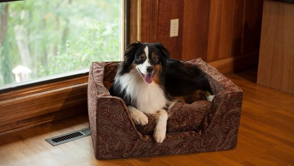 12 Best Luxury Dog Beds for 2018