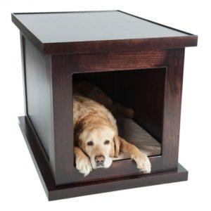 Zen Crate high-tech pet product