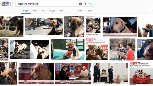 Dog Lover Shares Her Google Search Secret to Happiness and Everybody's Trying It