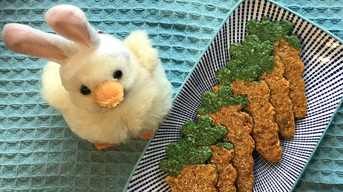 easter bunnys carrots dog treat cookie