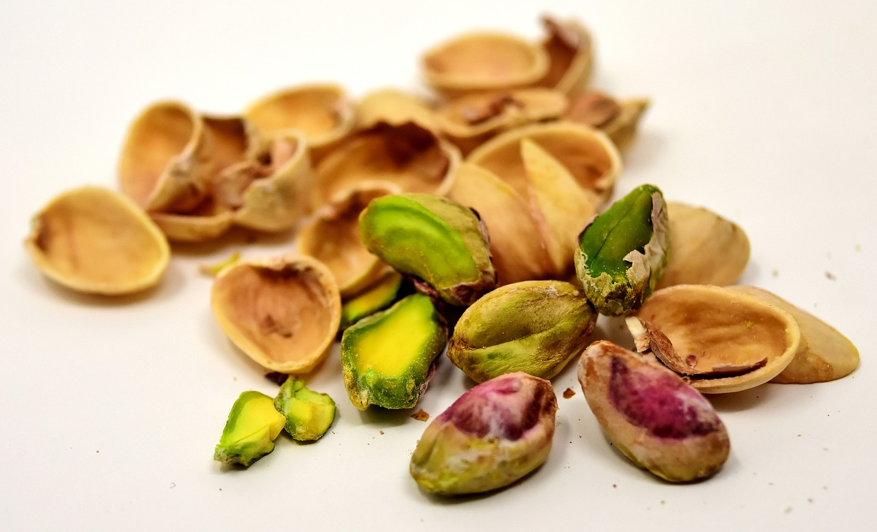 Can dogs eat pistachios? Pistachios like those pictured with shells here, can pose a danger.