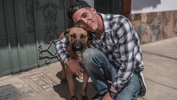 Daredevil Steve-O's Rescue Dog from Peru Now a Service Dog and Therapy Dog